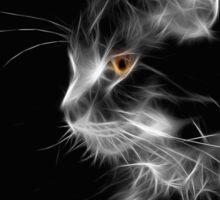 Cat By Night Sticker