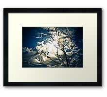 Eco Friendly  /  7 Framed Print