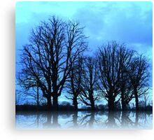 Blue Winter Trees Canvas Print