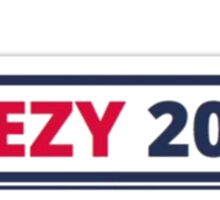 2020 Elections Sticker