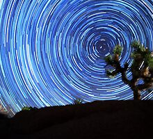 Stunning Circular Star Trails Above Joshua Tree Desert by Gavin Heffernan