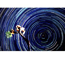 Epic Star Trails Vortex Over Joshua Tree. Polaris in Frame. Photographic Print
