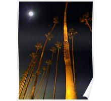 Santa Monica California Poster
