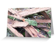 Pile of old tattered bark covered with moss Greeting Card