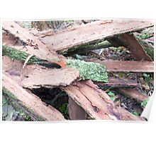 Pile of old tattered bark covered with moss Poster