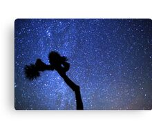 Sea of Stars Galaxy Over Joshua Tree Canvas Print