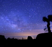 Milky Way Morning in Joshua Tree  by Gavin Heffernan