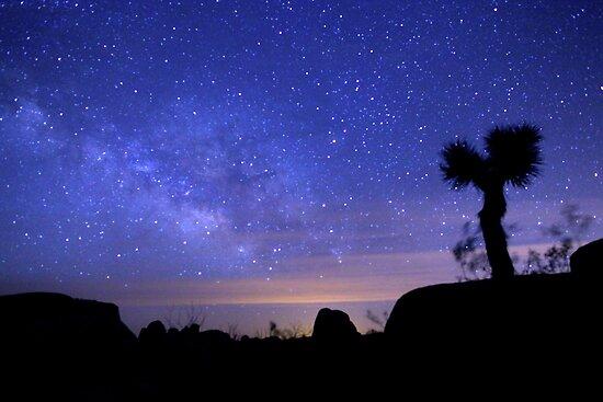 Milky Way Morning in Joshua Tree  by Gavin Heffernan