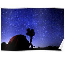 Starscape Over Joshua Tree Desert Poster