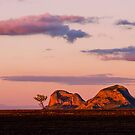 Gemini Peaks  by Stephen  Nicholson