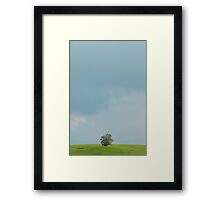 Tree on a hill Framed Print