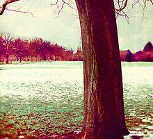 Martian Winter I by Sybille Sterk