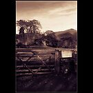 The Lake District 2 by Clive  Wilson