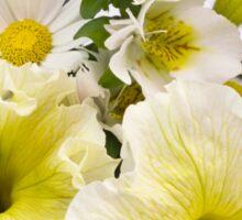 Yellow Petunias And Daisies  Sticker
