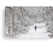 Disappearing into January Canvas Print