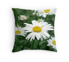 Daisies flowers Throw Pillow