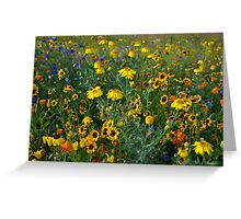 Wild Flowers, Olympic Stadium, London Greeting Card