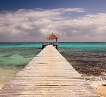 Boardwalk Dock and Caribbean Sea by Roupen  Baker