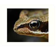 Froglet's Eye Art Print