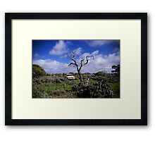 Tough country Framed Print