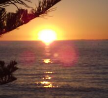 Cottesloe Beach sunset  by SezziT
