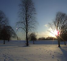 Winter snow in the park, Heaton Park by philipclarke