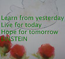 Learn from yesterday by Jacqueline Eirian McKay