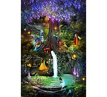 Fairy Bower Photographic Print