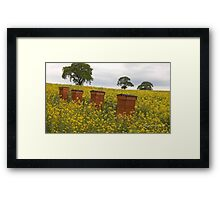 Beehives Framed Print