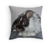Introducing Rowan Throw Pillow