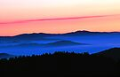 DUSK,CLINGMANS DOME by Chuck Wickham