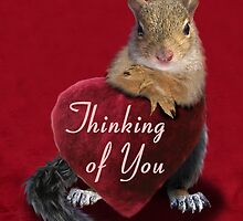 Thinking Of You Squirrel by jkartlife