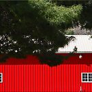 Broad Side Of A Barn by Chet  King