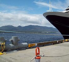 Cruise Ship Docked by ucfer09