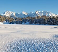 Winter Wonderland by Michael Breitung