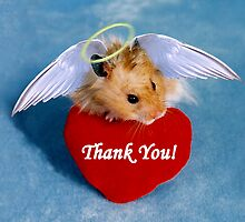Thank You Hamster by jkartlife