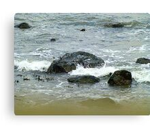 Too Cold To Paddle Canvas Print