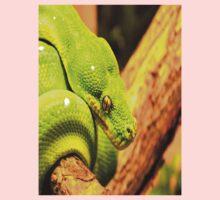 Emerald Tree Boa Baby Tee