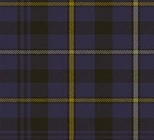 00051 Fleming Clan Tartan Fabric Print Iphone Case by Detnecs2013