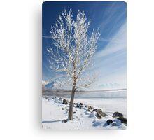 Lake Tree  Canvas Print