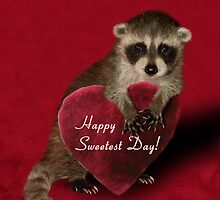 Sweetest Day Raccoon by jkartlife