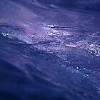 Fire & ice. II by Bluesrose