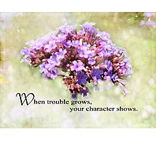 when trouble grows-inspirational Photographic Print
