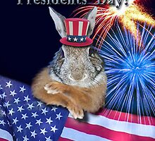 Presidents Day Bunny Rabbit by jkartlife