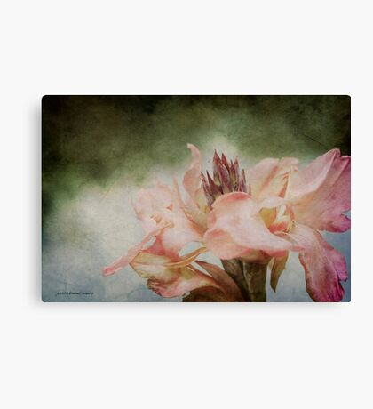 Somebody's Beauty Canvas Print