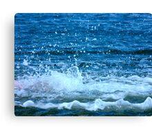 The Big Splash Canvas Print