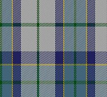 00064 Allanton Tartan Fabric Print Iphone Case by Detnecs2013