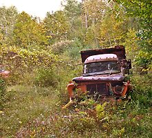 Rust and Remember 3 by Carolyn Clark