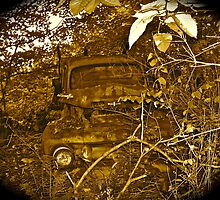 Rust and remember 4 by Carolyn Clark