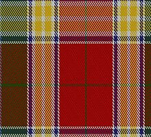 00069 Gibson Clan Tartan Fabric Print Iphone Case by Detnecs2013